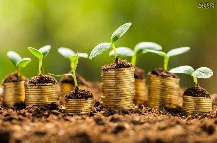 如何掌握基金投资技巧