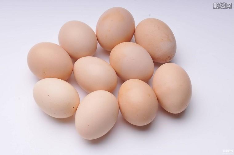 鸡蛋价格望迎上涨行情