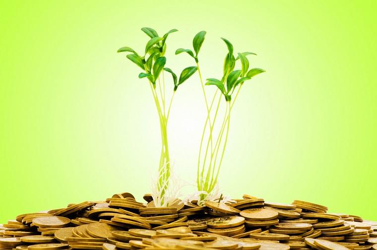 发布绿色金融发展规划