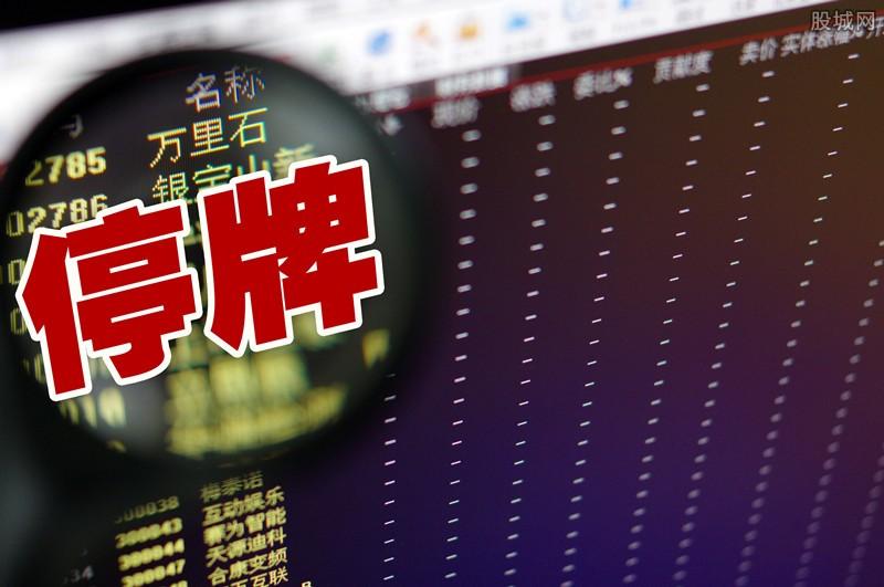 国民技术股票分析