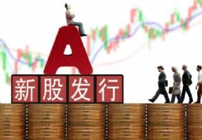 怎么使用中信证券APP申购新股?新手值得一看