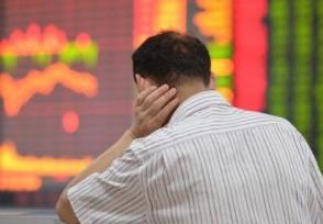 21只海南概念股涨停 哪些细分领域值得投资者关注