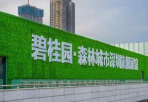 碧桂园近日公告称 分拆物业火速登陆港股