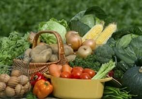 芝加哥农产品期货市场 期价12日全线上涨