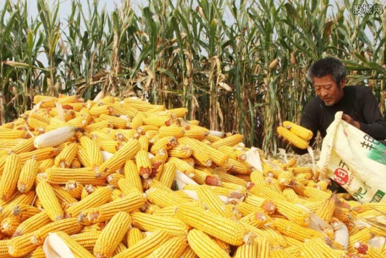 美国农作物产量增加
