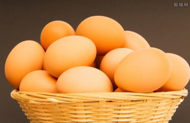鸡蛋主力合约走低