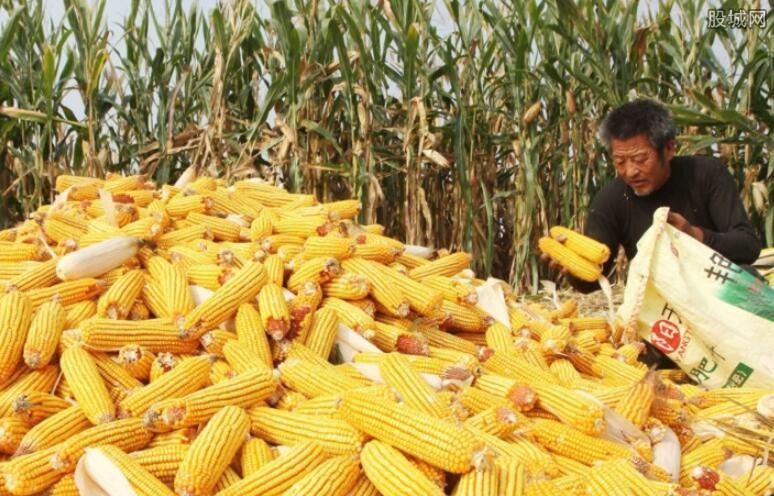 美国玉米供应过剩