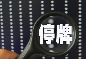 中京电子重组事项19日上会 公司股票当天停牌