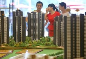 国泰君安鲍雁辛:地产板块在二季度有望全面爆发