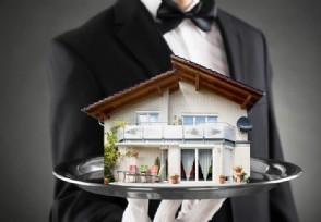 乐居牵手苏宁易购 探索建立线上房产交易生态体系