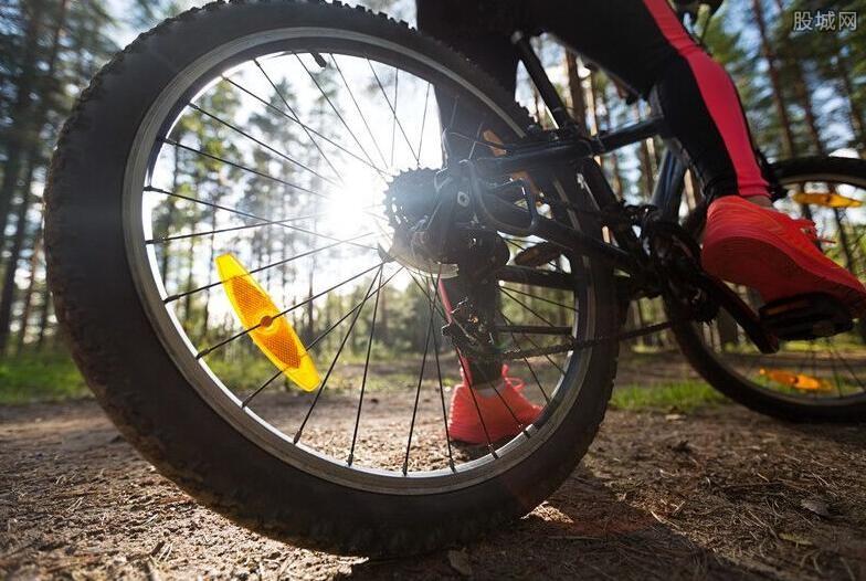 自行车相关股票