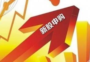 胜蓝股份今日申购 新股申购代码:300843