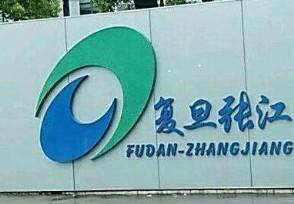 复旦张江今日上市 科创板新股开盘涨291.06%
