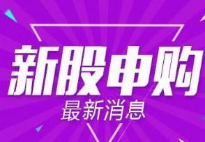 慧辰资讯今日申购新股申购代码:787500