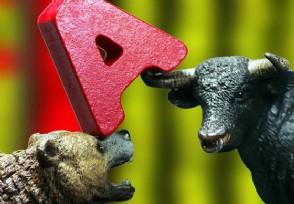 牛市来了该选股票还是基金?投资新手快来了解