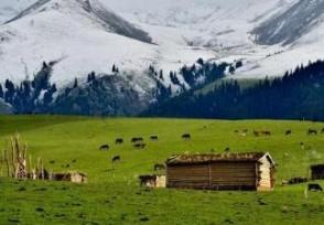 新疆開放所有戶外旅游景區西域旅游直拉漲超8%