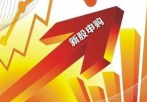 思瑞浦今日申购 发行市盈率141.48倍