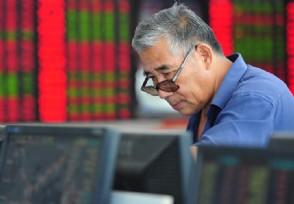 市场出现震荡调整 机构转而寻求确定性