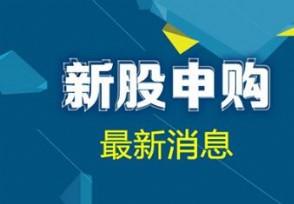 泛亚微透今日申购 发行价格为:16.28元