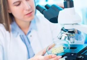 全員核酸檢測結果不作為離沈依據最新概念股介紹