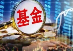 抱团基金有哪些股票2021相关个股一览