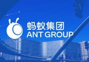 蚂蚁集团整体申设为金融控股公司上市暂缓原因公布