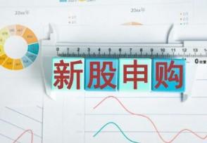 东瑞股份今日申购本次发行股份数量为3167万股