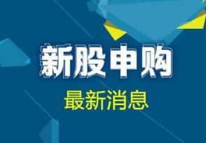 宁波色母今日申购新股什么时候上市?