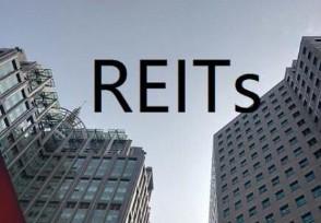 公募REITS上市之后涨跌幅多少上市首日全红