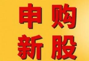 """义翘神州今日申购A股史诗级""""大肉签""""来了!"""