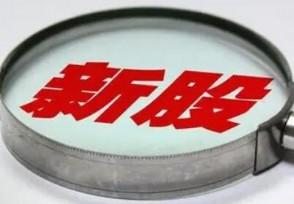 新瀚新材今日申购 发行市盈率36.47倍