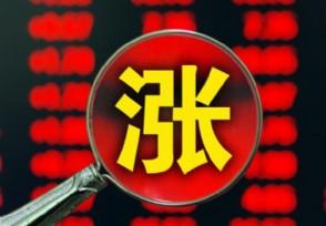 上海电力A股涨9.97%公司财务状况如何?
